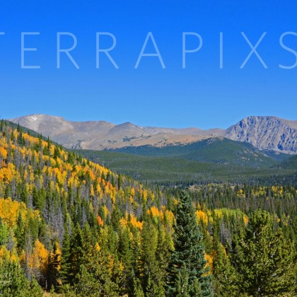 RMT 118-Aspen Gold-Rocky Mountain National Park, CO